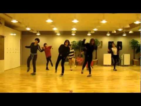 T-ara 'Lovey Dovey' mirrored Dance Practice
