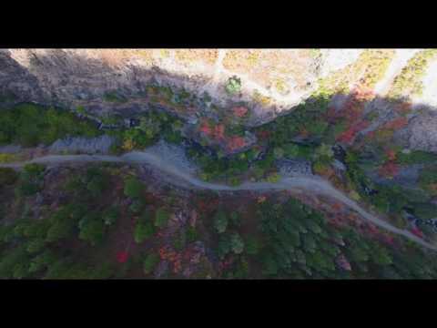 Wheeler Canyon Fall Colors