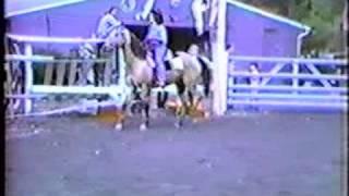 Gymkhana Part 2 Of 3 1981 Betamax Footage Milford, PA