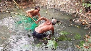 Vây Bắt HẢI TƯỢNG KHỔNG LỒ Trong Hầm Cá | Catch Fish Arapaima