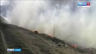 Из-за жары в лесах Омской области объявлен повышенный уровень пожарной опасности