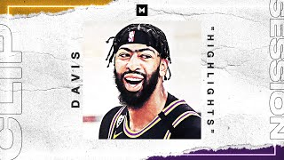 Anthony Davis Is Now A NBA CHAMPION! 2020 Playoff Highlights | CLIP SESSION