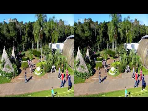 3D - Curta Curitiba