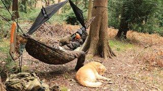 Hammock Woods Wild Camping