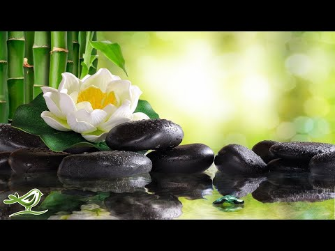 8 Hours of Soft Sleep Music: Relaxing Piano Music, Deep Sleeping Music, Meditation Music ★102