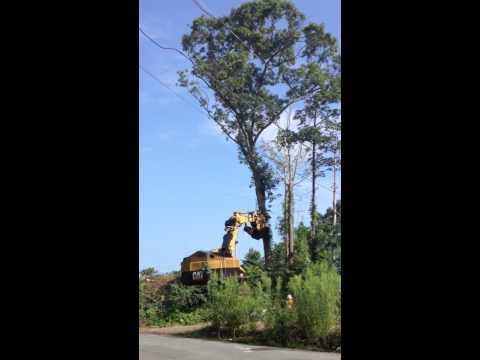 J. Masterson Construction's new Job @ Conifer Hill Danvers, MA