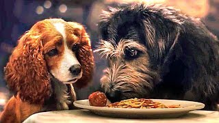 LADY AND THE TRAMP Full Movie Trailer (2019) Disney +