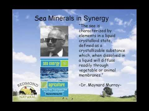 2011 04 19 19 02 SEA MINERALS FOR SOIL HEALTH   April 19th