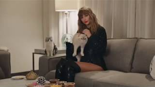 Taylor Swift Cat Commercial