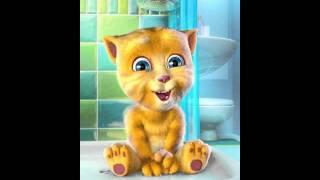 Mèo hát: Đi chăn bò