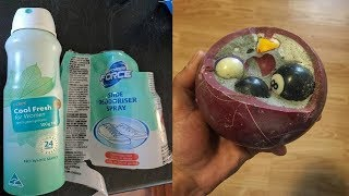 STRANGEST Things Found in Ordinary Objects