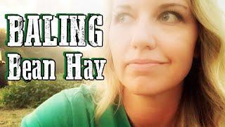 Night Moves : Raking & Baling Bean Hay