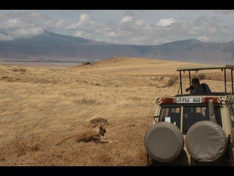 Safari holidays in Tanzania