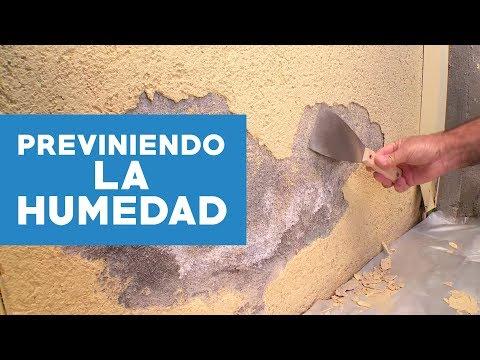 Soluci n para eliminar humedad y salitre musica movil - Como eliminar la humedad de la pared ...