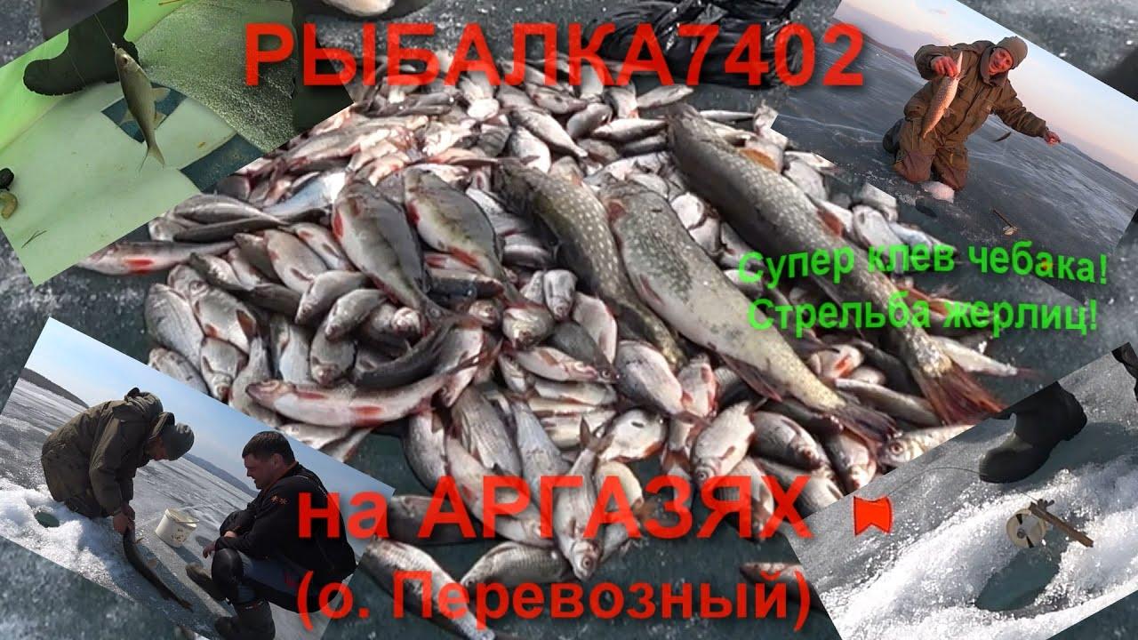 Аргази рыбалка 2019 форум