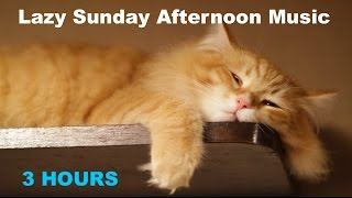 Sunday Afternoon Music: 3 Hours of Best Sunday Afternoon Music Playlist relaxing chill