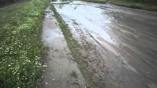 Reporter începător // Drumurile rele din oraşul Căinari