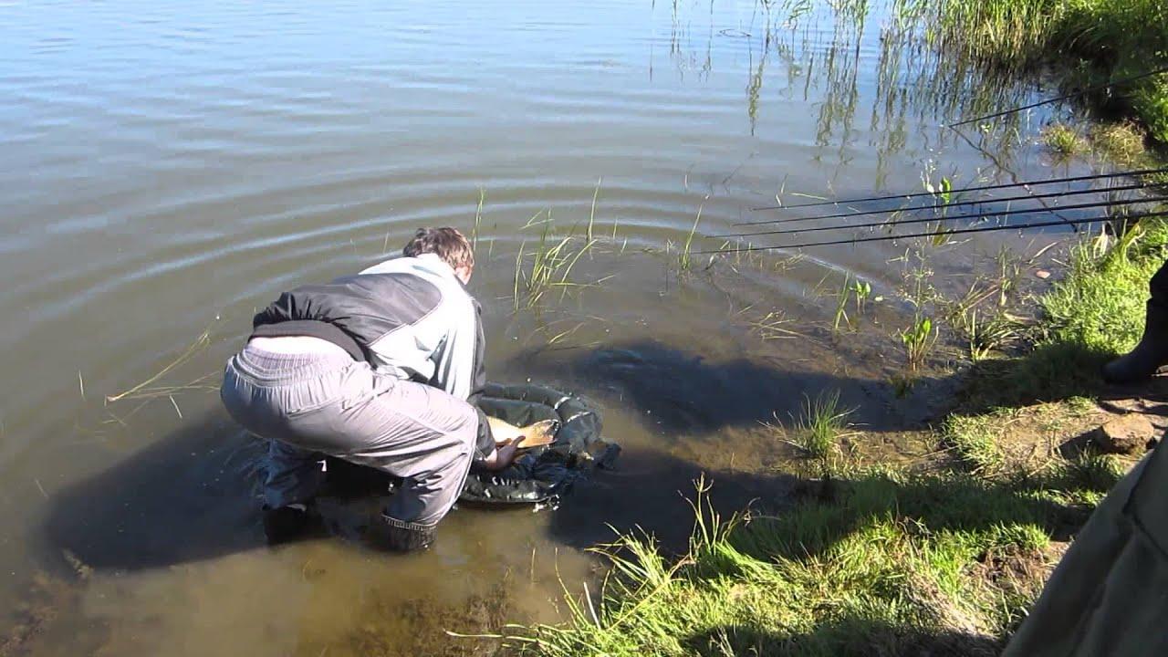 Куда поехать в орловской области на рыбалку