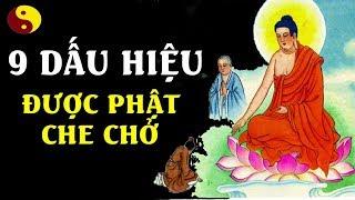 Có 9 Dấu Hiệu Này Bạn Là Người Được Thần Phật Che Chở - Lời Phật Dạy