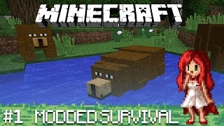 WELCOME BACK [Over the Rainbow - Modded Minecraft Ep 1]
