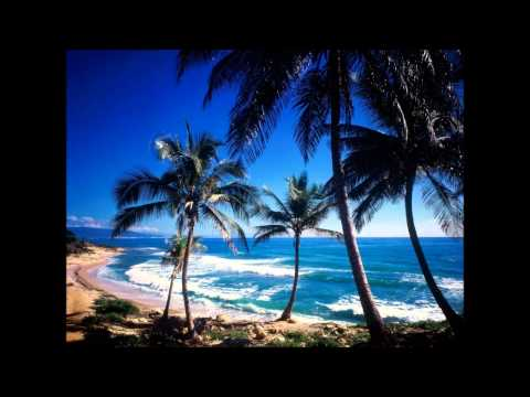 Jamie Drastik Feat. Pitbull - Save Me (new 2011)(HD video)