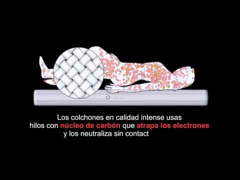 ¡Descarga tu cuerpo de las tensiones acumuladas!