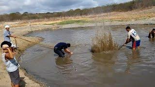 Ra ao cạn bắt cá không ngờ phát hiện 2 con cá giá cực đắt