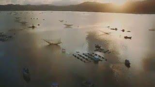 Cảnh Đẹp Miền Nam - Việt Nam