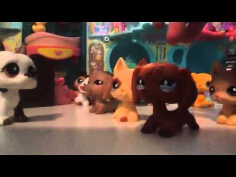 Lps: More guest stars ( for puppylover863)
