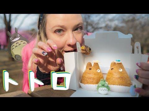 Totoro Cream Puff Adventure Day
