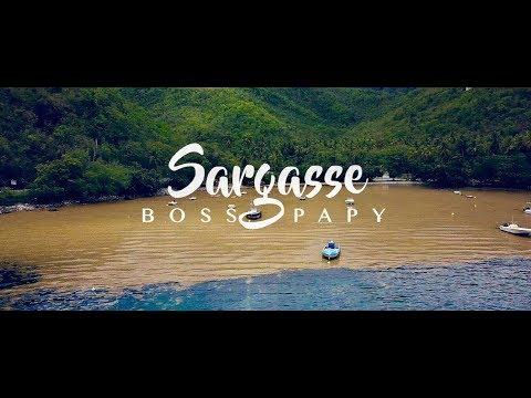Boss Papy - Sargasse [Parodie Drex - Frozen]