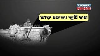 Big Debate: Farmers loan waiver Politics in Odisha