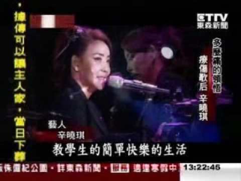 《台灣啟示錄》辛曉琪 ① 多麼痛的領悟 療傷歌后