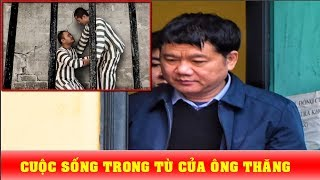 Đại ca trong tù nhường chỗ cho Đinh La Thăng và bí mật sau giọt nước mắt tại phiên tòa - News Tube