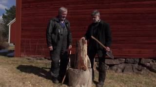 STAVSPÅN - Stig Nilsson hugger ett näbbspån från Jämtland