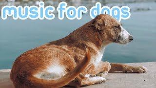 15 HOURS of Relaxing Music for Dogs with Sleep Problems! NEW 2019!