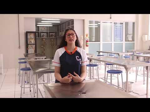Maria Vitória Ferreira, aluna do 1° ano