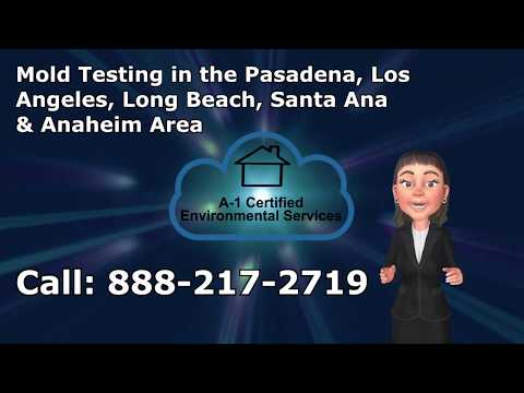 Mold Testing Manhattan Beach