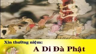 Kể Chuyện Đêm Khuya, Những Câu Chuyện Tâm Linh Nhân Quả Báo ứng Thời Đức Phật, Kinh Pháp Cú Thí Dụ
