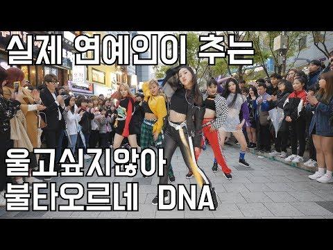 실제 연예인이 추는 커버댄스!! 울고싶지않아 | 불타오르네 | DNA (춤추는곰돌 AF STARZ)