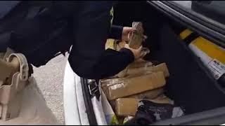 PRF e PC prendem traficante com 14 quilos de maconha no porta malas de carro, na BR 116, em Pelotas