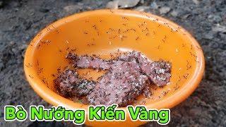 Lâm Vlog - Món Ăn Kinh Dị Thịt Bò Nướng Kiến Vàng   AMAZING FOOD