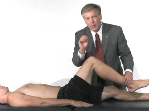 Hip & Groin Exam (5 of 7): Manual muscle testing