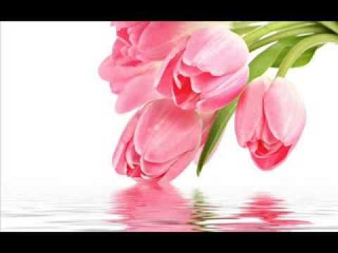 La Bella Baskets ~ Beautiful Flowers By Kim's La Bella Gift Baskets