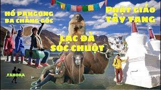 Hành Trình Hymalaya Vlog-02: Núi tuyết, lạc đà, tu viện & hồ quay phim Ba Chàng Ngốc