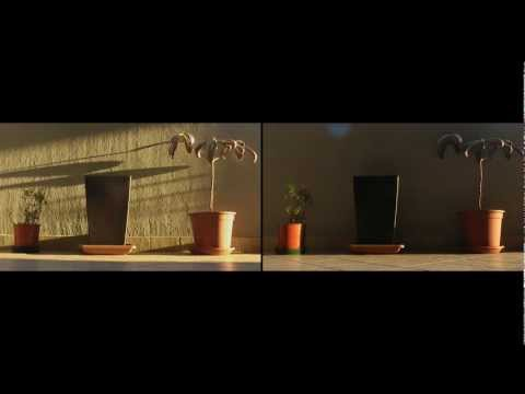 Segnoesuono - Lights & shadows