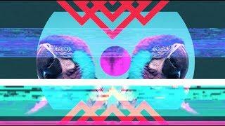 Bassnectar & Gnar Gnar - I'm Up ft. Born I Music ◈ [Reflective]