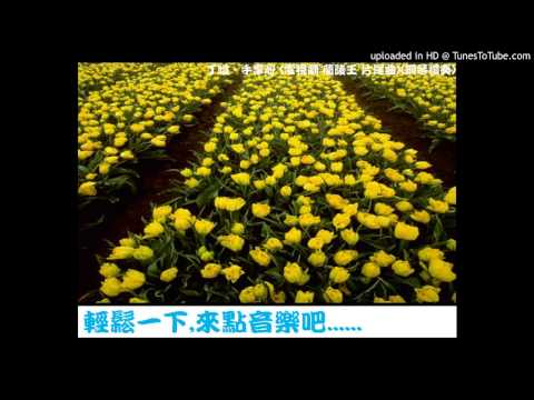丁噹 - 手掌心 (電視劇