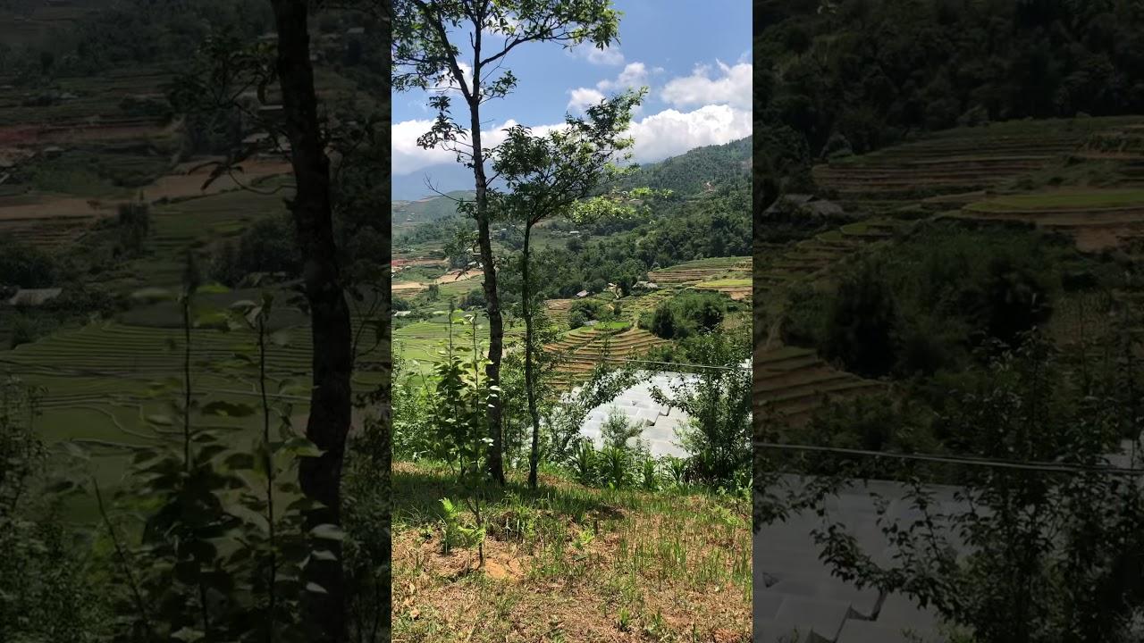 Cơ hội tốt nhất ngay lúc này khi mua mảnh đất có 800m2 thổ cư tại Sapa với giá chỉ 7 tỷ video