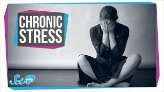 How Chronic Stress Harms Your Body